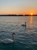 Our Wonderful Waterway - Peggy Bates