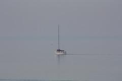 Our Wonderful Waterway - William Murray